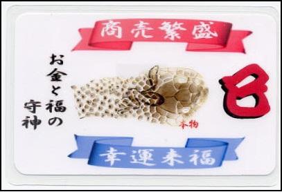 珍しい蛇の抜け殻がカードに