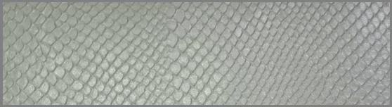 白蛇財布の表面拡大写真